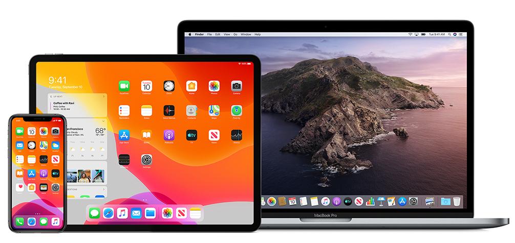 Apple Developer Enterprise Program