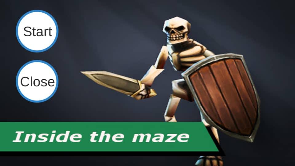 Inside the maze pro