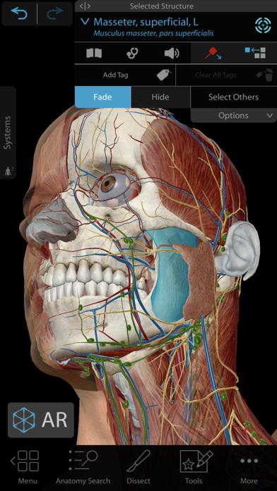 Human Anatomy Atlas 2021